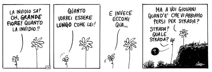 Oh, grande fiore!